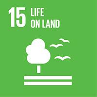 SDG_en_15