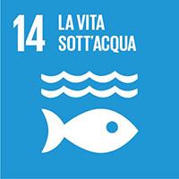 SDG_en_14